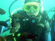 Снаряжение для дайвинга и подводной охоты в Ульяновске