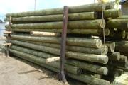 Опоры деревянные пропитанные для ЛЭП